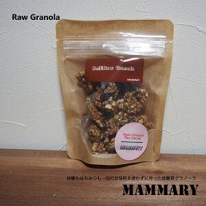 【低糖質グラノーラ】メール便OK 3種類の味 アップルシナモン バナナカカオ マンゴーココナッツ スーパーフード 低GI 低糖質 砂糖不使用 ローフード ダイエット アレルギー