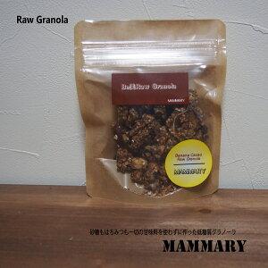 10種類のスーパーフードのグラノーラ【低糖質Rawグラノーラ】 バナナカカオ 50g(お試しサイズ)