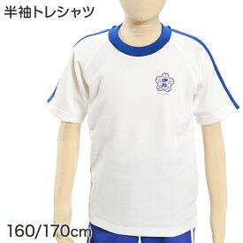 ギャレックス あわら市立伊井小学校 体操服 半袖トレシャツ 160cm・170cm (Galax)【取寄せ】