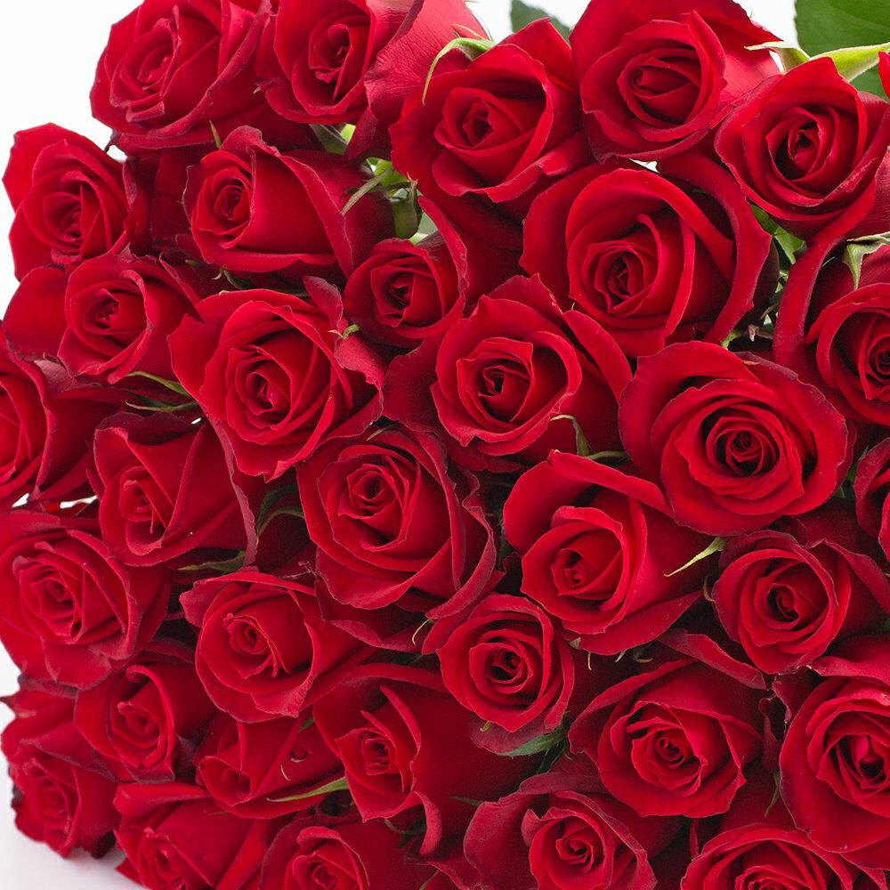 本数を選べる赤バラの花束 赤色系 約50cm 誕生日やお祝い、記念日に年齢分の本数でプレゼント【薔薇 プレゼント ギフト 誕生日 歓送迎会 結婚祝い 記念日 還暦祝い プロポーズ 父の日 クラシックバレエ 花 指定日配達対応 あす楽 土曜営業 15時までのご注文で即日発送】