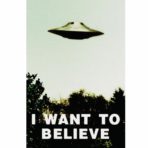 X-ファイル I Want To Believe ポスター プリント即納!