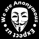 【We are Anonymous Expect us】アノニマス デカール ステッカー ホワイト 【シール】