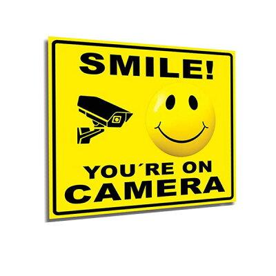 【ステッカー】SmileYou'reOnCameraデカール15cm×18cm自己接着性気泡フリーUV保護【雑貨シール防犯】