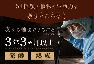 【公式/送料無料】万田酵素GINGER分包タイプ