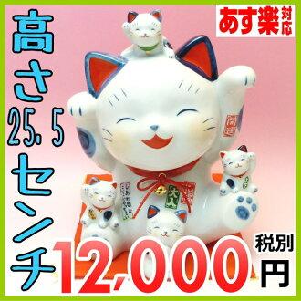 染錦福zukushi招财猫8.5号(储蓄箱)/储蓄箱