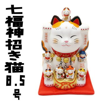 The collaboration of gods and beckoning! And business bring powerful gods Maneki-Neko (8.5 in) height 26 cm