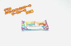 グリコ バランスオンミニケーキ チーズケーキ味 20個☆☆菓子 ギフト 詰合せ 子供 職場 おつまみ パーティー 駄菓子 お家 人気 景品 旅行 菓子セット 満足 安い イベント お菓子詰め合わせ☆☆ お菓子の満月