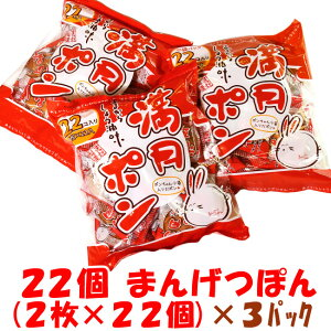 【小分けにピッタリ!かわいい小袋入り】22個 まんげつぽん(2枚×22個)×3パック