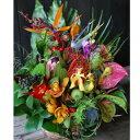 おまかせ!ハワイアンバスケットフラワーアレンジ10000 花 ギフト 誕生日 送料無料 アレンジメント フラワー ギフト …