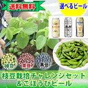 父の日ギフト 笑顔と言うより笑えます!理由は商品説明をご覧ください。枝豆栽培チャレンジセット&ごほうびビール …