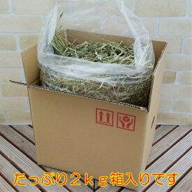 牧草 干し草 アルファとチモシー選べる2kg ウサギ・ヤギなどの小動物に栄養価の高い干し草