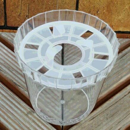 水栽培ポット ヒヤシンス1球用 1鉢