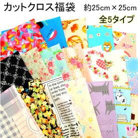 【DD】 カットクロス 福袋 約25cm×約25cm 16枚入 はぎれ (全5タイプ)