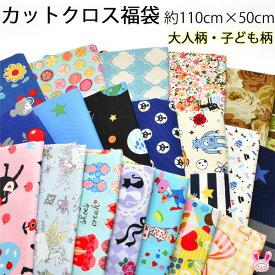 【DD】 カットクロス 福袋 約110cm×約50cm 4枚入 はぎれ (全6タイプ)
