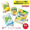 送料無料!春夏お試しセット(蒟蒻畑レモン2袋 ララソーダ、パイナップル各3袋 アロエinパイナップル6個) / マンナン…