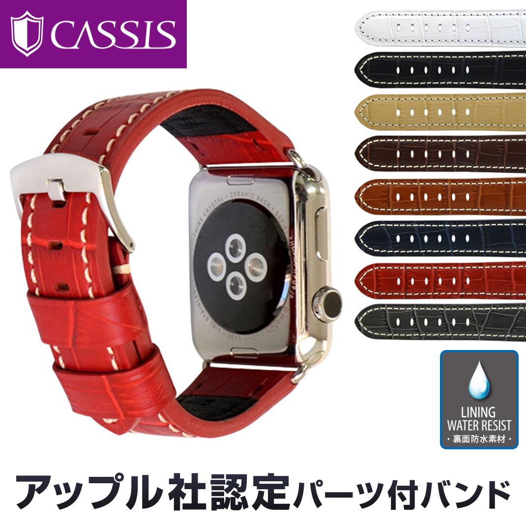 アップル社認定パーツ付バンドアップルウォッチ 42mm用 専用バンド カシス製 腕時計ベルト TYPE PAN (タイプ パン) 時計ベルトMade for Apple Watchサードパーティ