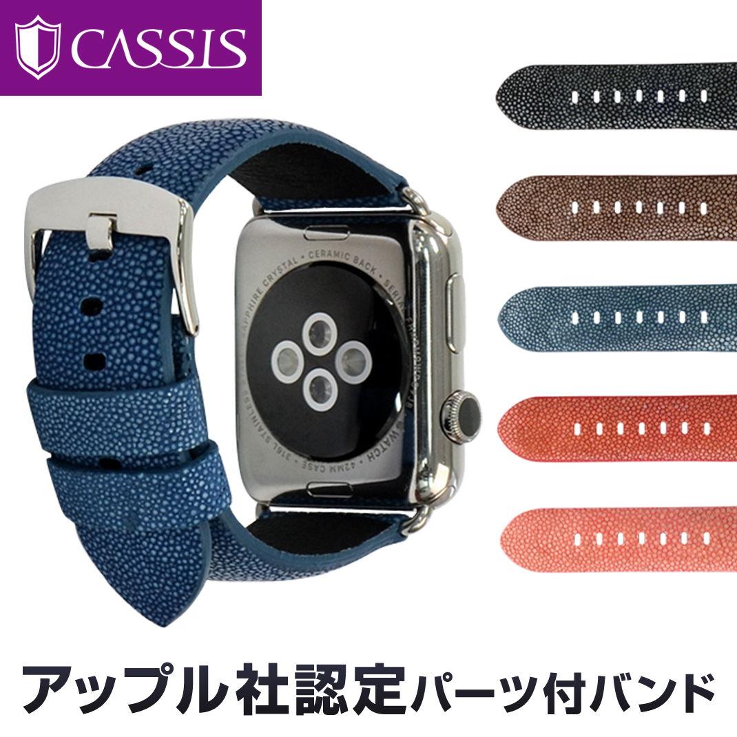 アップル社認定パーツ付バンドアップルウォッチ 42mm用 専用バンド カシス製 腕時計ベルト TYPE PNR44 UBPAN007(ガルーシャ) 時計ベルトMade for Apple Watchサードパーティ