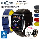アップルウォッチ バンド ベルト スポーツ apple watch series 5,4,3,2,1 シリコン ラバー 38mm 40mm 42mm 44mm モレラート社製 RIDING 生活防水