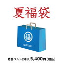 【時計ベルト2本入で5,400円】2019年 マーノ・ア・マーノ 新春 福袋 HAPPY BAG 【送料無料】