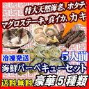 海鮮バーベキューセット 5人前 海老、ホタテ、マグロ、イカ、カキの5種 海鮮 バーベキュー セット 送料無料 通販特価 楽天ランキング入賞