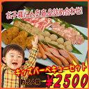 【商番821】キッズバーベキューセット (4〜5人前) 焼肉 バーベキュー セット 子供 人気 おすすめ