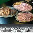 バーベキュー セット ランキング常連! 送料無料の激安価格! 特製タレ箸 紙皿付き 40人前(20人前×2) リニューアル1…