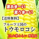 【予約販売】【送料無料】野菜【6月28日出荷分】フルーツ王国の激あま 激うま トウモロコシ約5kg(2Lサイズx12本) スタ…