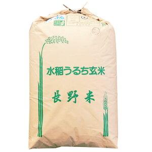 【まとめ買い】【精米料無料】特別栽培米 令和元年産 長野県産 (伊那) コシヒカリ 1等 玄米30kgx1袋 無洗米加工/保存包装 選択可