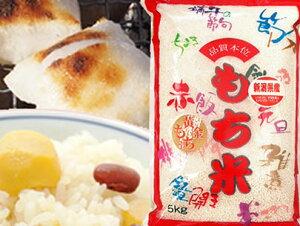 最高級もち米 令和元年産 新潟県産こがねもち 白米5kgx1袋 玄米/無洗米加工/米粉加工/保存包装 選択可