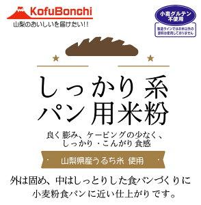 【送料無料】しっかり系 パン用米粉 (山梨県産米使用) 2kgx5袋 外は固め、中はしっとりした食パンづくりに