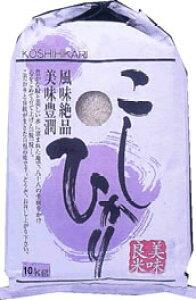 クラフト 米袋 お米 10kg用 「こしひかり」 20枚