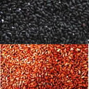 【送料無料】【投函便】お試し 古代米(黒米、赤米)各500g