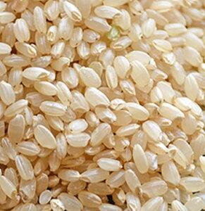 令和元年産 北海道産ゆめぴりか 玄米1kg単位販売(乳白ポリ袋入)※量り売りとなります。