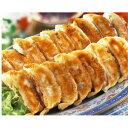 ハマトミ食品 横浜餃子 17gx50個入り【ピックアップ】【ポイント5倍】