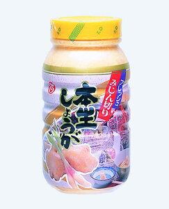 テーオー食品 フレッシュみじん切り本生生姜 950g<冷蔵品>