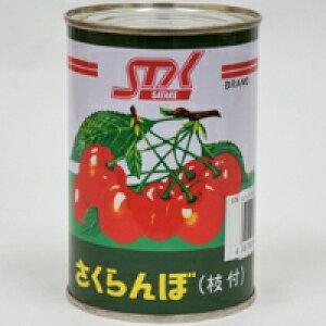 【常温】さくらんぼ枝付(L) 4号缶 (/農産缶詰)