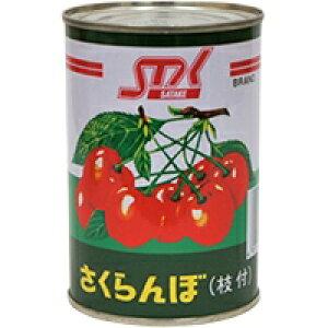 【常温】さくらんぼ枝付(M) 4号缶 (/農産缶詰)