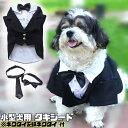 【 小型犬用 】 犬 服 タキシード 春 可愛い 結婚式 リングドッグ 蝶ネクタイ ネクタイ フォーマル 記念日 お祝い 正…