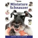 2020年版 THE DOG 卓上カレンダー ミニチュア・シュナウザー