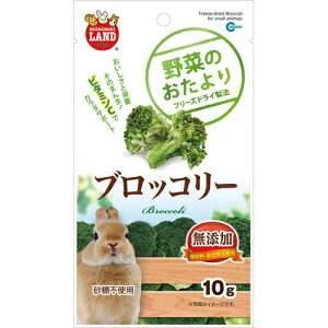 【訳あり大特価!】【即日発送】野菜のおたより ブロッコリー 10g