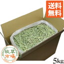 【送料無料】牧草市場 USチモシー1番刈り牧草ダブルプレス5kg(プレミアム)(うさぎ・モルモットなどの牧草 業務用…