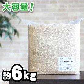 サンコー 三晃商会 業務用 白樺広葉樹チップ6kg(小動物用敷材)