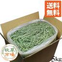 ◆30年度産新刈り◆牧草市場 スーパープレミアムチモシー1番刈り牧草5kg(うさぎ・モルモットなどの牧草 業務用 シン…