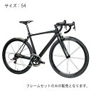 FUJI(フジ) 2017モデル SL ELITE ブラック サイズ54 フレームセット 【自転車】