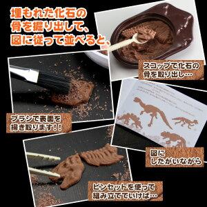 【ネット限定先行販売】最高級チョコレートを使った、割って!掘って!楽しむチョコレート★ジュラシックショコラ【パズル】(チョコレート)
