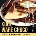 【送料無料】マキィズの訳あり割れチョコ 450g【maQショコラ WARE(ワレ)】【神戸】【最高級チョコレート使用】/10P…