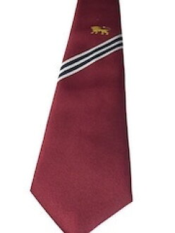 便宜貨 ! GAJOKAI 領帶領帶男士領帶聚酯海軍灰色紅色