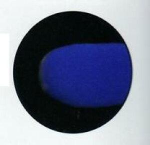 チョコレート用 色粉  青(ブルーベリー)色 200g 業務用 フランスPCB社