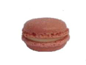 NEW! フランス産マカロン バラ『ローズ』 業務用 48個 (冷凍)ブリドール社