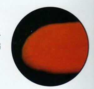 チョコレート用 色粉  オレンジ色 200g 業務用 フランスPCB社